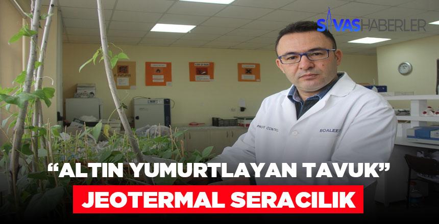 Jeotermal Seracılık yeni kazanç merkezi