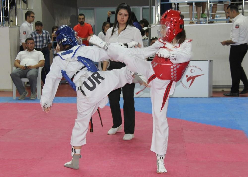 Sivas'ta Taekwondo Türkiye Şampiyonası başlangıç gösterdi