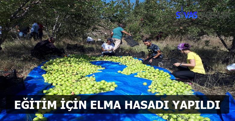 Bağışlanan elmaların hasadı gerçekleştirildi