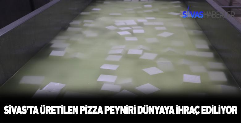 Sivas'ta üretilen pizza peyniri dünyaya ihraç ediliyor