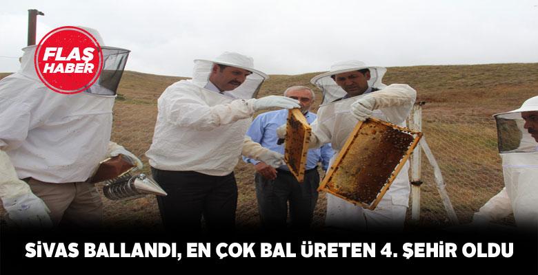 Sivas bal üretiminde zirveye yaklaştı