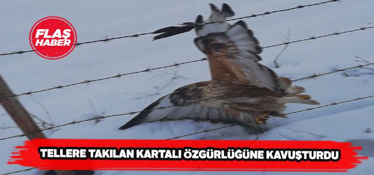 Karşıyaka köyü muhtarı tellere takılan kartalı kurtardı