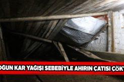 Sivas'ta çatısı çöken ahırdaki 2 hayvan telef oldu