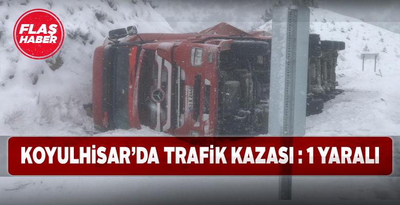 Koyulhisar'da yoldan çıkan kamyonun sürücüsü yaralandı