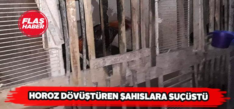 Horoz dövüştüren 18 şahıs yakalandı